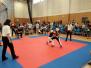 Turnaj v kickboxu Praha 9. 6. 2018